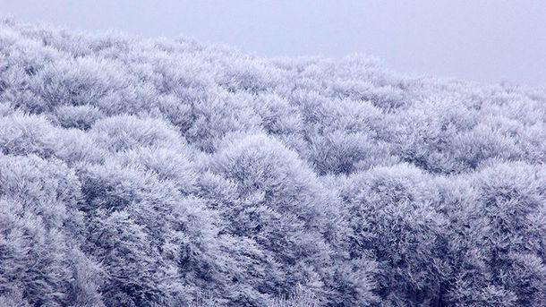 Українцям обіцяють підвищення температури повітря