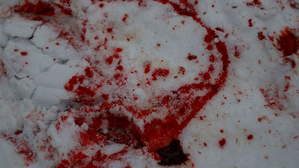 Кров на снігу