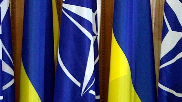 Прапори НАТО та України