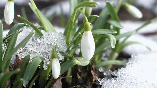 Народный прогноз на весну