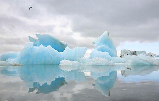 Льодовики