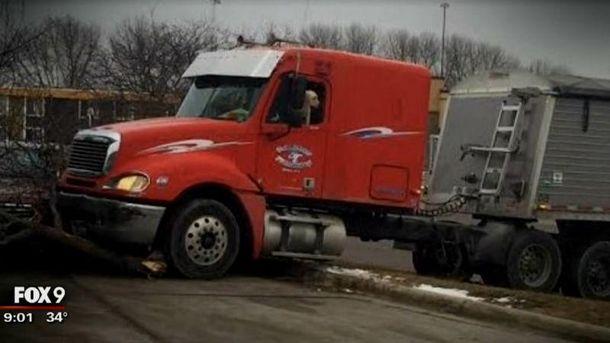 Собака за рулем грузовика