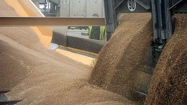 Склад зерна