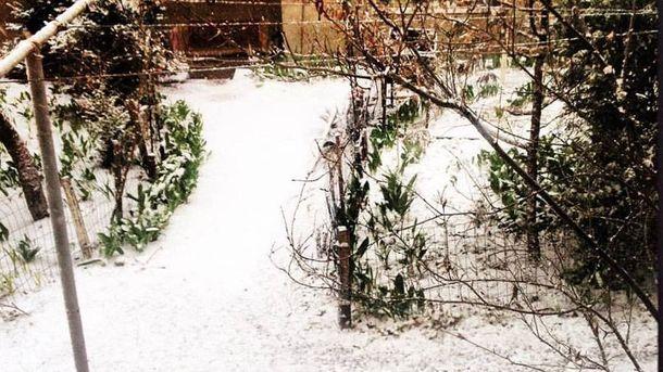 Сніг в березні