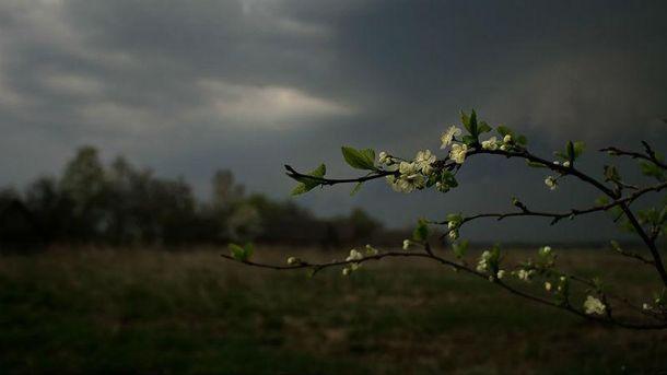 В Украину надвигаются грозы