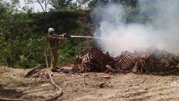 Пожар на свалке скелетов животных