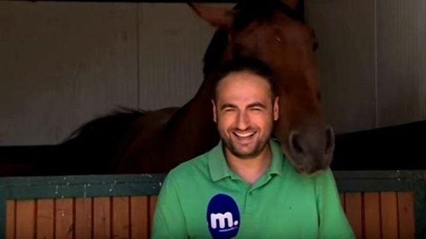 Как конь мешал журналисту