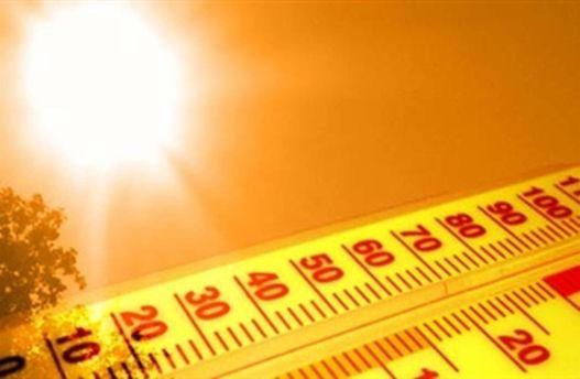 Київ вже б'є температурні рекорди