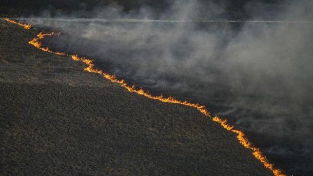 Пожежа у Зоні відчуження, архівне фото