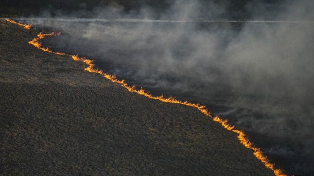 Пожар в зоне отчуждения, архивное фото