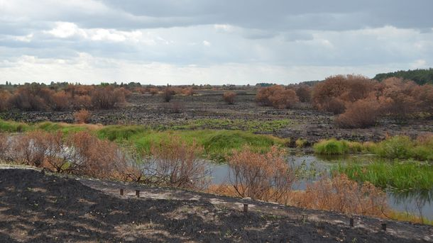 Чорнобильська зона після пожежі