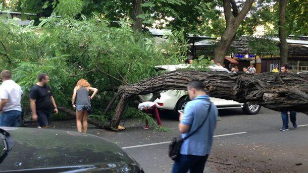 Непогода бушует в Одессе
