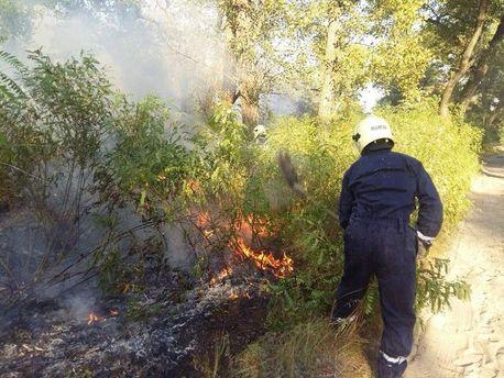 Пожар на Трухановом острове