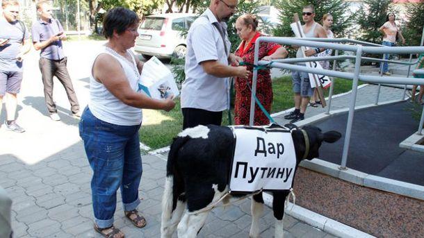 Путин теперь имеет собственный скот