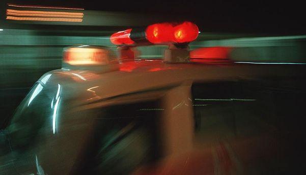 Під колесами авто поблизу Києва загинула дитина