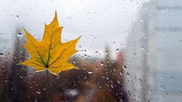 Йде справжня осінь