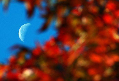 Начинается астрономическая осень