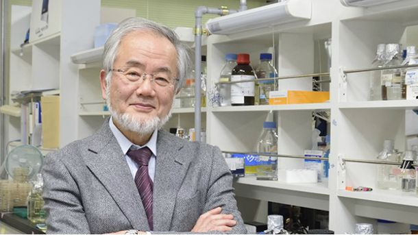 Японський біолог Йошиниру Осумі
