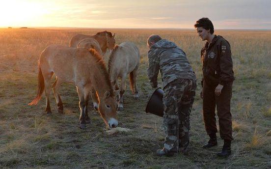 Володимир Путін з конями