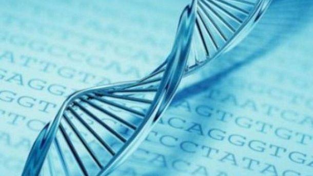Ученые обнаружили ген выкидышей