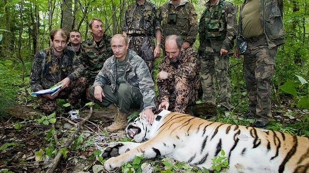 Владимир Путин и тигр