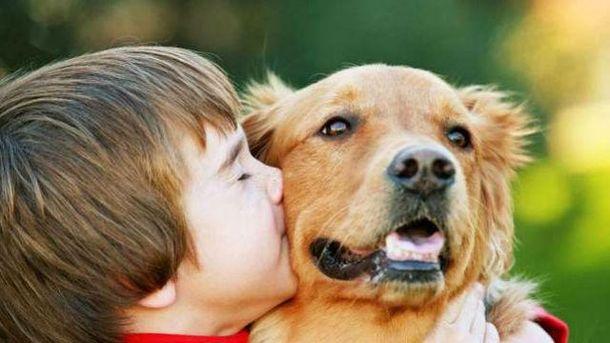 Собаки помогут предотвратить диабет