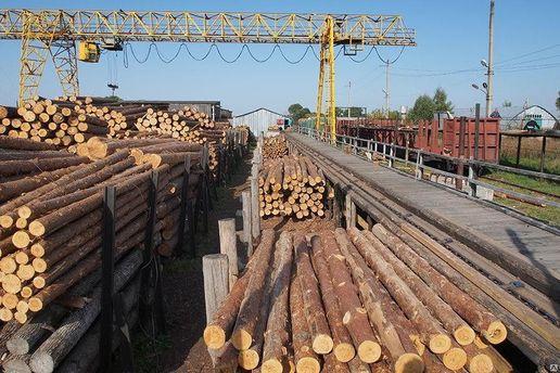 Экспорт украинской древесины