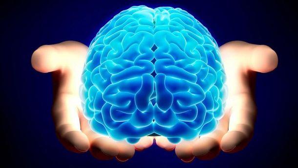 Искусственный человеческий мозг