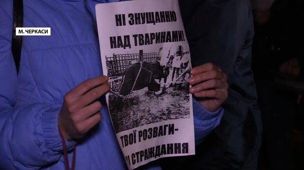 Протести черкаських зоозахисників
