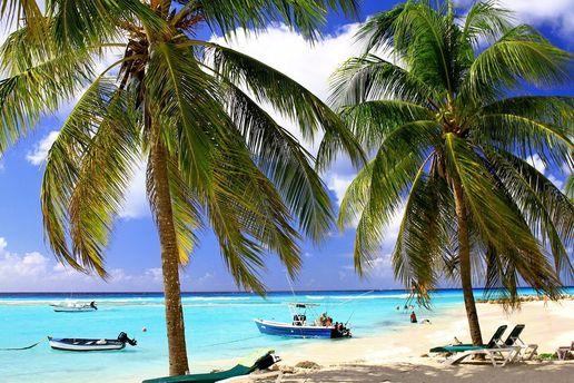 Экзотический пляж