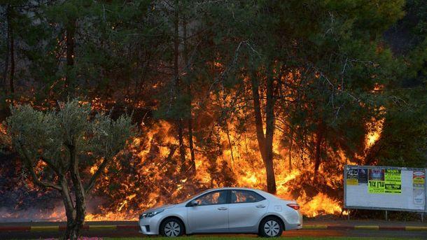 Масштабные лесные пожары в Израиле
