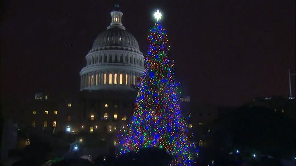 Новогодняя елка у Конгресса США