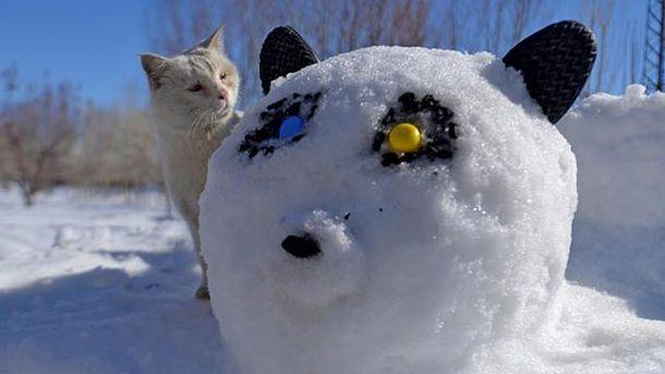 Зима готовит сюрпризы