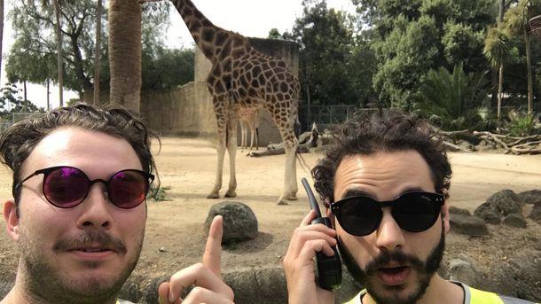 Как бесплатно попасть в кинотеатр, зоопарк и на концерт Coldplay: курьезная история с жилетом