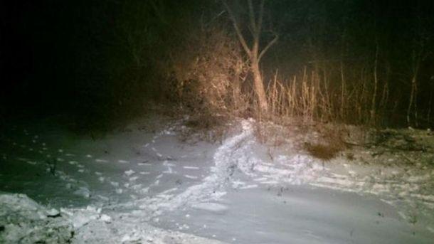 Машина врізалась в дерево