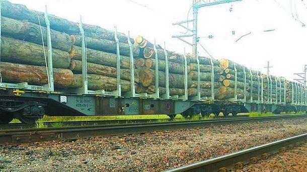 Незаконный вывоз леса-кругляка