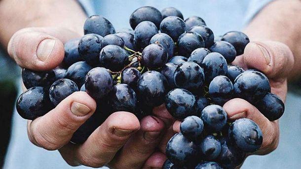 Виноград покращує пам'ять