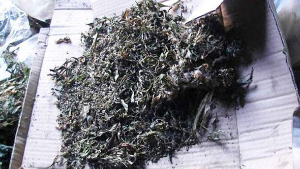 Партію марихуани викрили у мешканця Слов'янська