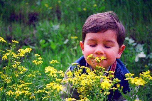 Корисні запахи