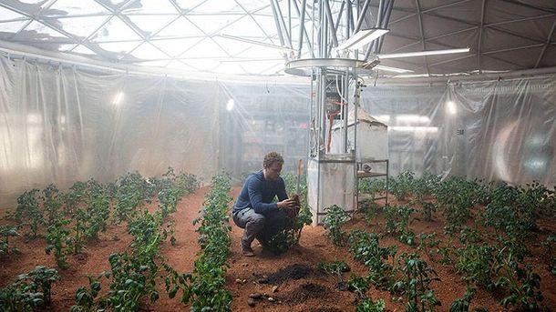 На Марсі можна вирощувати картоплю