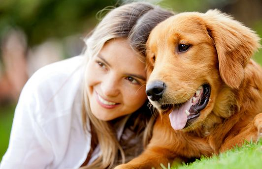 Собака і дівчина