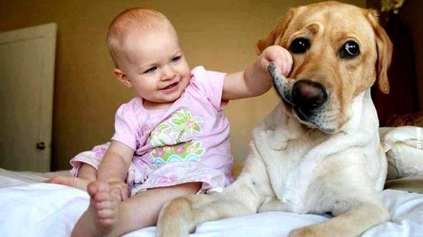 Діти і собаки