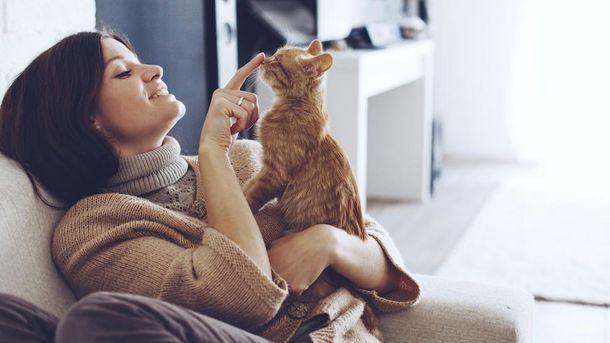 Кот и его хозяйка