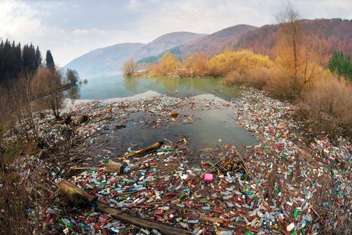Экологическое бедствие в Карпатах