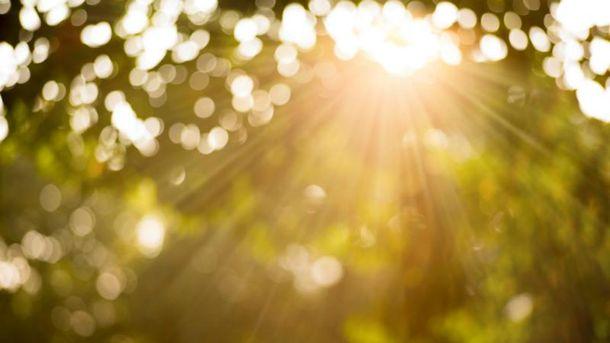Первый понедельник апреля будет солнечным