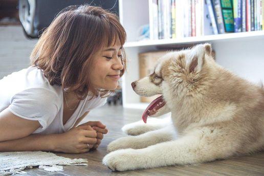 Спілкування з тваринами