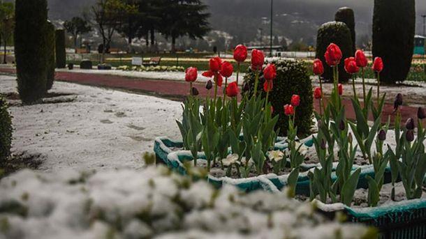 В нескольких областях Украины выпадет дождь со снегом