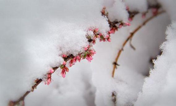 Погода на 20 апреля: стало известно, когда потеплеет