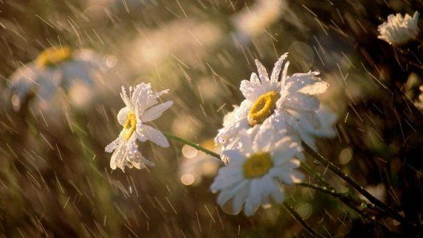 Прогноз погоди на 26 квітня. Починається спека, однак місцями грози та вітер