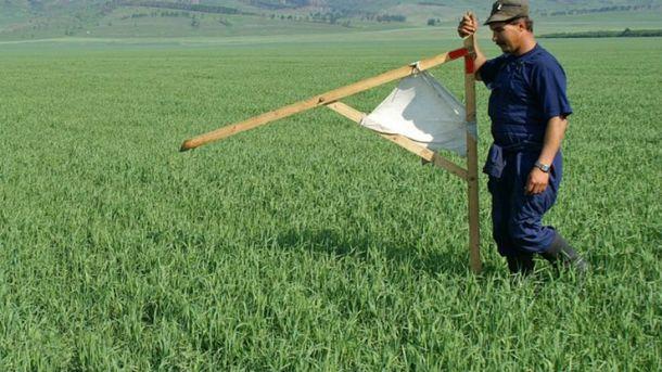 МВФ ожидает от Украины запуска рынка земли